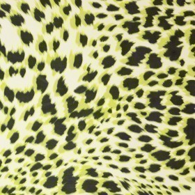 Animal print on silk Ungaro album